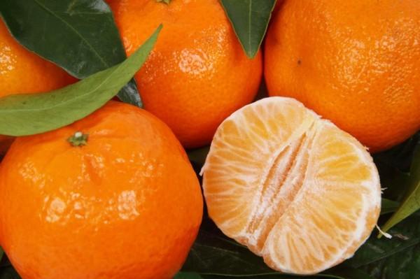 Olio essenziale di mandarino rosso