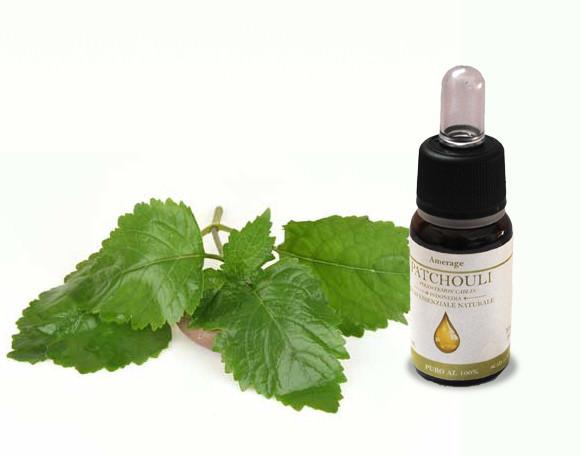 olio essenziale di Patchouli